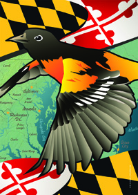 Maryland - Oriole House Flag