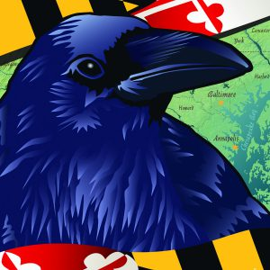 Maryland - Raven Garden  Flag