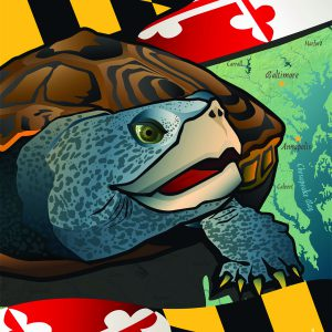 Maryland -Terrapin House Flag